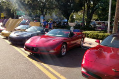 Lot's of Vette's to see.