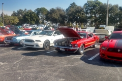 Mustang Club of Tampa
