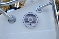 Spectra with JL Audio M880 close-up